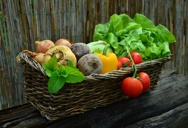 Can Grow Taller Programs Work For Vegetarians?